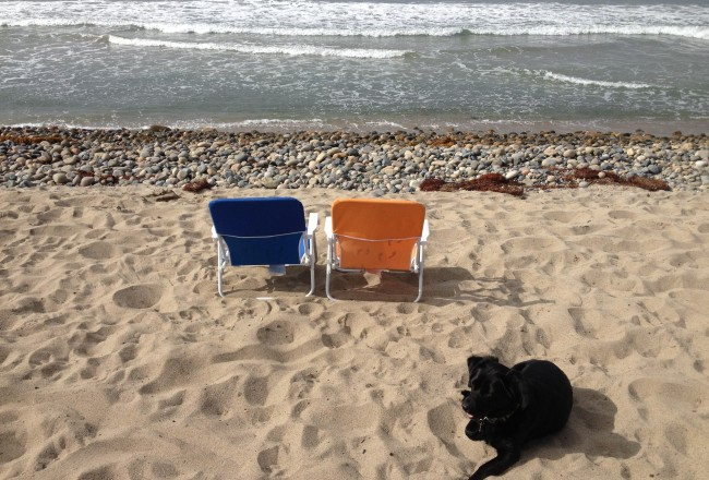 Beach Camping San Onofre
