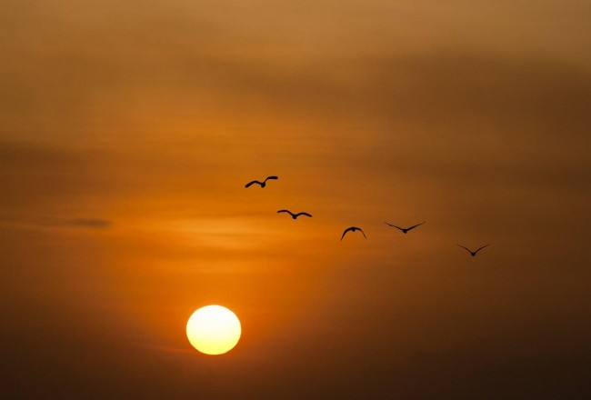 sunset-600095_1280